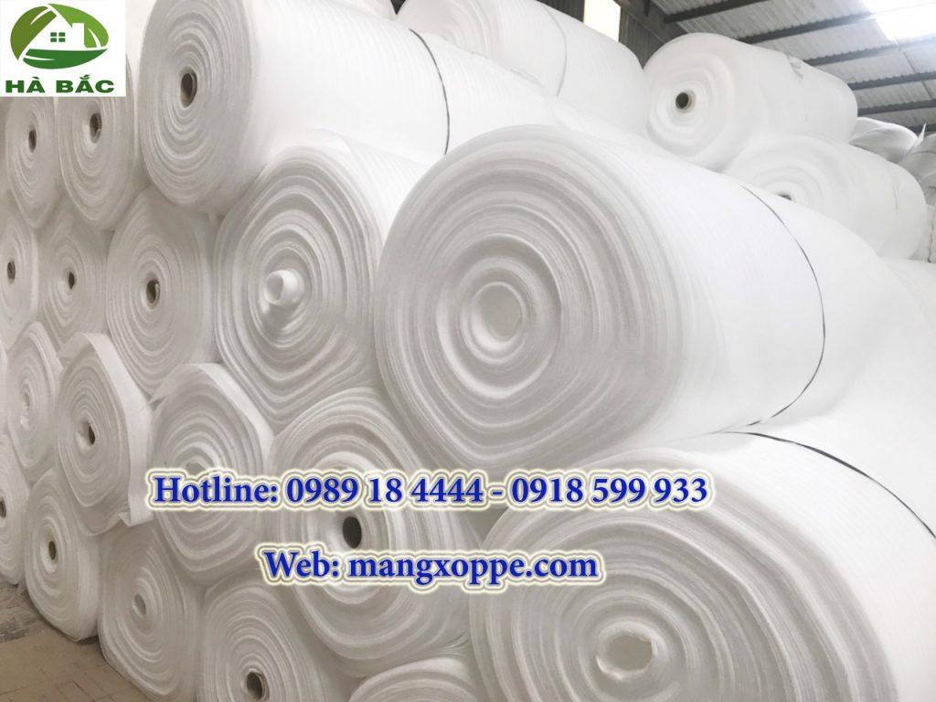 mang-xop-pe-foam-ha-bac-1024x768.jpg